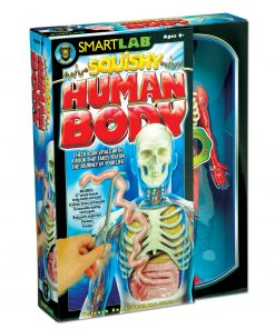 SmartLab QPG Lab For Kids, Squishy Human Body, Grade 3 – 8