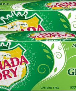 Canada Dry Ginger Ale Soda 12 oz. 24/Carton (00078000152166) 349378