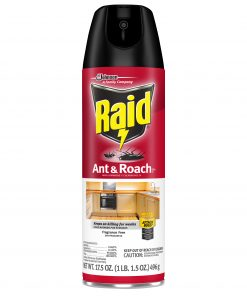 Raid Ant & Roach Killer 26, Fragrance Free, 17.5 oz