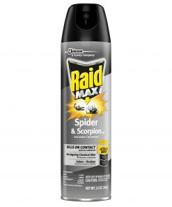 Raid Max Spider & Scorpion Killer, 12 oz