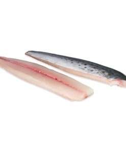 SPANISH MACKEREL FILLETS approx. 10 lbs total