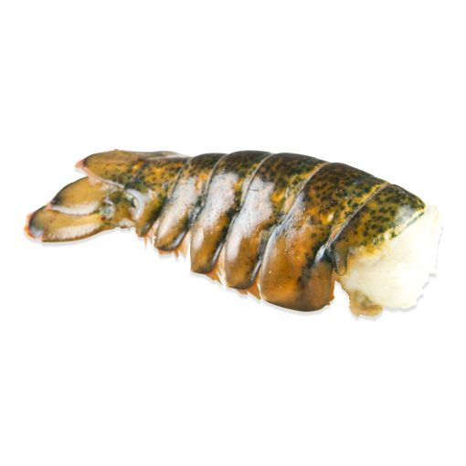 MAINE COLD-WATER LOBSTER TAILS approx. 10 lbs total