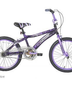 Genesis 20″ Girl's Inspire Girls' Bike with Front and Rear Hand Breaks